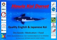 Howie Koi Dorset - Pond Cleaning and Maintenance - Covers Dorset, Hampshire and Somerset