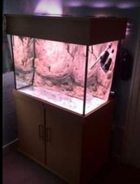 ND aquatics fish tank 33 inches X24X20