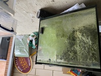 Fish tank and sump