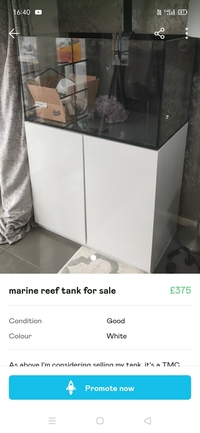 Marine reef tank potentially for sale